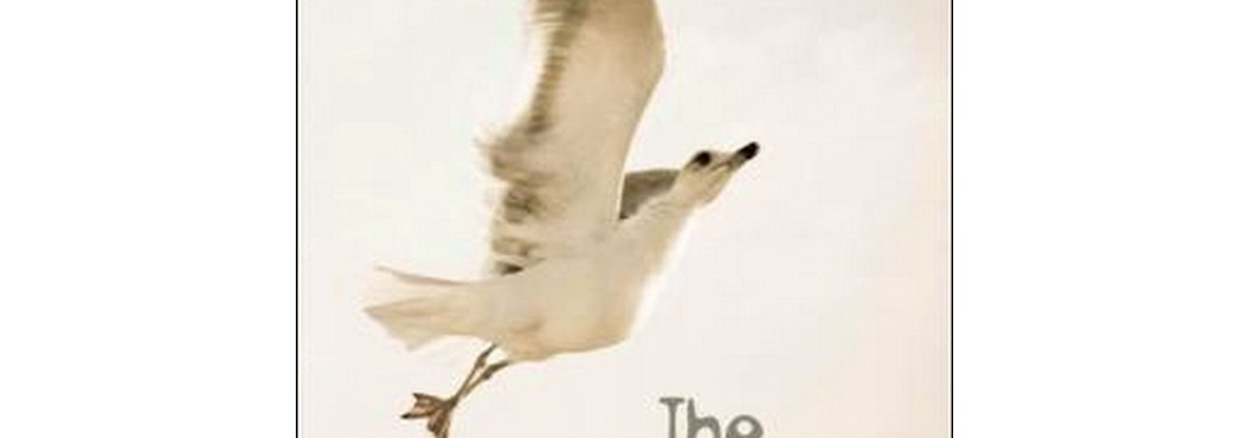 the-seagull